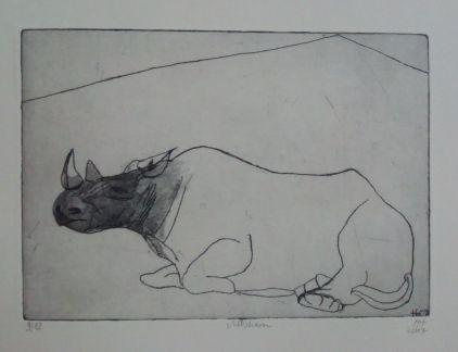 Nashorn,rhino, vernis mou/Aquatinta, 21cm x 13cm, 2017